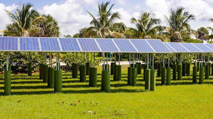 Solar Technology Has Become More Reliable and More Efficient, Lowering the Cost of Generating Energy.